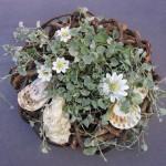 Sommerkrans lavet til Kildemarkedet i Tisvilde. En sommerting til sommerhuset. Her er det en potteplante købt hos min lokale blomsterpige, sat i en krans af grene. Keramikblomster og forskellige strandskaller. Der skal ikke så meget til!!!!!!!!!!!!