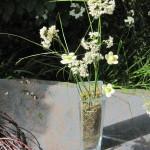 lille vase med græsser og keramikblomster mini